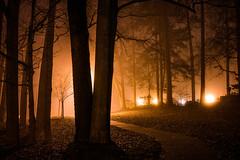 2020-02-17_14 (Paul and Nalva) Tags: sonya7riiii samyang45mmf18 martinslanding fog
