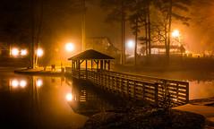 2020-02-17_12 (Paul and Nalva) Tags: sonya7riiii samyang45mmf18 martinslanding fog