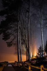 2020-02-17_11 (Paul and Nalva) Tags: sonya7riiii samyang45mmf18 martinslanding fog