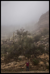 Catalina Hwy #12 2020; Marie in the Clouds (hamsiksa) Tags: plants flora desertplants succulents xerophtyes sonorandesert santacatalinamountains coronadonationalforest weather fog clouds cloudsdownonthemountains landscape landscapewithfigures mountains