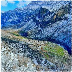 Kurdistan ❤️کوردستان (Kurdistan Photo كوردستان) Tags: کوردان colemêrg wan şernex mêrdîn riha amed sêrt bidlîs erzirom ezirgan çewlîk mamkî qersê erdêxanê semsur sêwas kîlisê تهران، گرگان، تبریز، مشهد، کرمانشاە، سنندج، همدان، شاهرود، سەركەڤر، ناڤدارا، شرێ ئالكا، ئیروان سکا ملانێ ههربۆ بێکرێس ئالیان رەزیان هەمدلا ببانا، هەسنێ هۆستان هەسنەكا، رێشە ئاستە سالوكا فقیران erbil kurdish libya عفرين davos switzerland boeing ryanair delhi india mumbai كورونا bryant coronavirus istanbul rojava peshmerga peshmerge barzani herêmakurdistanê ireland london japan deutschland سليمانى