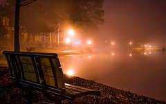 2020-02-17_13 (Paul and Nalva) Tags: sonya7riiii samyang45mmf18 martinslanding fog