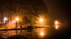 2020-02-17_10 (Paul and Nalva) Tags: sonya7riiii samyang45mmf18 martinslanding fog
