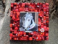 Memory Mosaic - Zahn (siriusmosaics) Tags: memorymosaic petmosaic greyhound petmemorial siriusmosaics 2020 pet memorial art