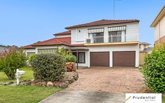 35 Dale Avenue, Liverpool NSW