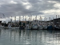 Grey Morning at Puerto Penasco, Mexico (Craigs Travels) Tags: fishingboat harbor rockypoint puertopenasco mexico seaofcortez clouds