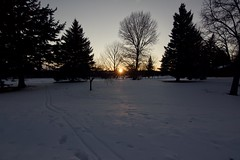 Beaming through the cold sunset (BlackhatTaylor) Tags: sunset trees park snow outdoor landscape idaho winter cold cool