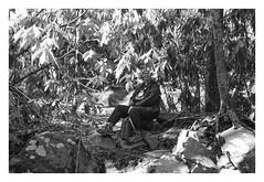 crouching tiger hidden cutie (Joe Jesus) Tags: film bw hc110 homedeveloping blackandwhite nikon nikonf2 50mm ilford hp5