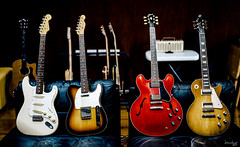 Classic Family Portraits (Daniel Y. Go) Tags: sony sonya7iii a7iii sonyalpha apha mirrorless sonymirrorless alphashooter danielygo fender gibson stratocaster telecaster es335 lespaul guitars