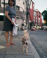 woman walking her dog 2 (_gem_) Tags: philippines metromanila manila makati poblacion city street urban woman dog pet animal canine