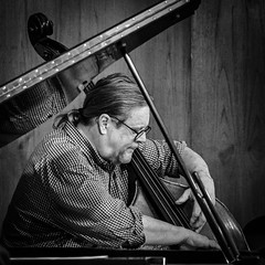 Framed (tim.perdue) Tags: framed bass bassist acoustic upright string man person figure musician performer concert performance stage jazz music grand piano lid angle black white bw monochrome mono blackandwhite nikon z 50 z50 nikkor 1680mm instagram reflection bexley ohio columbus candid portrait explore popular interesting explored interestingness musical instrument