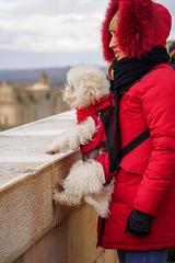 Matera (jmarnaud) Tags: italy 2019 winter family puglia matera unesco héritage people city walk street old house dog woman