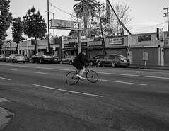 Exposition Park (Sterling S. Gold) Tags: streetphotography streetphotographer sunset losangeles southlosangeles southcentrallosangeles southcentral street city blackandwhite blackandwhitephotography people bike person one oneperson landscape document documenting documentary stilllife expositionpark