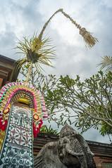 Penjor (kuuan) Tags: voigtländerheliarf4515mm manualfocus mf voigtländer15mm aspherical f4515mm superwideheliar apsc ricoh gxr mmodule ricohgxrm leicam ltm m39 leicathreadmount bali indonesia ubud entrance ganesh penjor