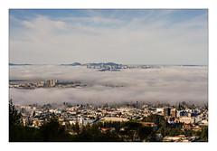 Morning Fog over San Francisco Bay (JohnKuriyan) Tags: sanfranciscobay sanfrancisco berkeley baybridge fog campanile salesforcetower