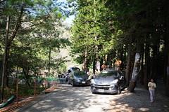 R0007120 (諾雅爾菲) Tags: ricohgr ricohgr3 camping taiwan 台灣 露營 南投 國姓 國姓鄉 水秀農場 水秀農場露營區