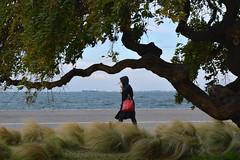 0300 (mkarabouta) Tags: woman walk walking hood bag city port wind tree bushes sea
