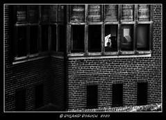 Rapunzle contemplating (Roland Bogush) Tags: cambridge sonyrx100mk7 blackwhite