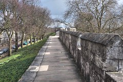 York walls (Tony Worrall) Tags: yorkshire york northyorkshire urban north dailyphoto photooftheday nice update place location uk england visit area attraction open stream tour country item greatbritain britain english british gb capture buy stock sell sale outside outdoors caught photo shoot shot picture captured ilobsterit instragram walls tourists walk walkway past relic
