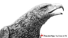 HOW TO DRAW A GOLDEN EAGLE´S HEAD WITH FOUNTAIN PEN - Pen & Ink (fineart-tips) Tags: art drawing finearttips montegrappa ink eagle sketch fountainpen leonardopereznieto tutorials
