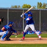 Chicago Cubs 2020 Spring Training Gallery 4