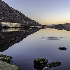 Cregennan lakes - splash (iantanky) Tags: water lake cregennan wales snowdonia northwales landscape landscapephotography nikon nikond750 reflection splash nopeople nature travel tourism ripples