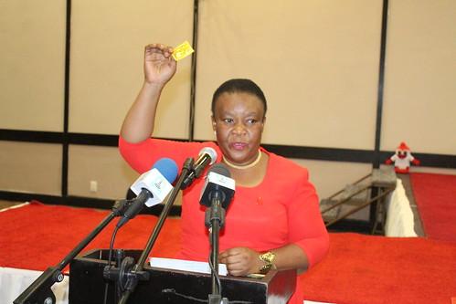 ICD 2020: Lesotho