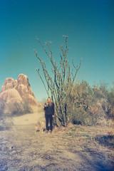 Desert camping (wrenee.com) Tags: 2020 camping climbing joshuatree kodak200 pentaxuc1