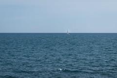 Monopoli (paola.ing94) Tags: monopoli puglia mare italia barca blu italy sea boat