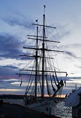 the rig,  Oslo 2020 (matthias416) Tags: ship sailer silhouette sky clouds wolken himmel schiff segelboot meer sea nikon norway norwegen oslo yourbestoftoday