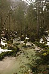 IMG_6216 (ChPflügl) Tags: bluntautal salzburg royal tennengau österreich austria europe europa eu world winter februar spaziergang walking hiking nördliche kalkalpen alpen berge mountains alps chpflügl chpfluegl christian torren tal valley alpine golling