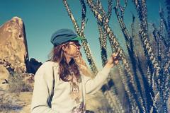 Desert camping (wrenee.com) Tags: 2020 camping climbing joshuatree kodak200 pentaxuc1 ocotillo cactus