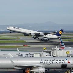 Lufthansa 2003 Airbus 340 D-AIHC c/n 523 departing San Francisco Airport 2020. (17crossfeed) Tags: lufthansa airbus 340 daihc 523 aviation airplane plane claytoneddy claytoneddy90 17crossfeed pilot sanfranciscoairport sfo planes