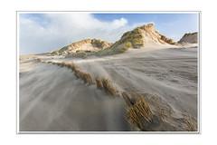 """Dennis (Marcel Kramer K3ll) Tags: storm sand zand beach pentax marcelkramer """"pentaxflickraward"""