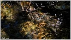 Aguas del Maqui (Claudio Andrés García) Tags: trekking vertientedeagua watershed montaña mountain senderismo senderism manantial fountain naturaleza nature quebradademacul aguasdelmaqui fotografía photography shot picture cybershot peñalolénchile santiagochile flickr