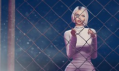 Who of us is free? ....it depends on which side of the fence you are (catcatalina) Tags: tableauvivant littlefox supernatural lyrium access shinyshabby