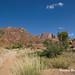 DSC06356 Namibia L4