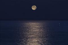 Moon sinking (Peter Warne-Epping Forest) Tags: moon dawn sea fishingboat calm tenerife peterwarne seascape february winter canaryislands canon appicoftheweek