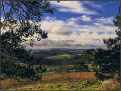24 Hours In The Welsh Marches. (Picture post.) Tags: landscape nature green hills trees bluesky clouds fields buildings paysage arbre