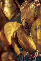 Golden Leaves #001 (axelord101) Tags: stillife pattern leaves travel golden