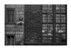 Here's looking at you, kid (K.Pihl) Tags: olympusom1 windows pellicolaanalogica rodinal1100 building monochrome berlin analog zuiko50mmf14 standdevelopment blackwhite schwarzweiss bw surveillance film ilfordfp4400