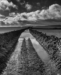 Limestone Way (l4ts) Tags: landscape derbyshire peakdistrict whitepeak tideswell limestoneway ldp flooded drystonewalls cloudscape clouds blackwhite monochrome