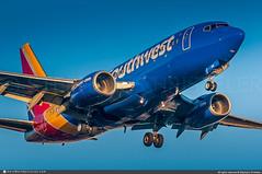[LAX.2019] #Southwest.Airlines #WN #Boeing #B737-700 #N701GS #awp (CHRISTELER / AeroWorldpictures Team) Tags: us airliner airlines southwestairlines wn swa lowcost usa northamerica cfmi cfm56 msn278366 b737 7377h4 wl winglets plane aircraft airplane avion boeing n35108 planespotting spotting landing losangeles airport california lax klax sunset spotter planespotter christelerstephane avgeek aviation photography aeroworldpicturescom awpteam nikon raw nef lightroom chr nikkor