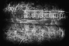 at the duck pond (ro_ha_becker) Tags: monochrome schwarzweiss zwartwit biancoenero blancetnoir blackandwhite blancoynegro abstract film analogue leicaii leitzelmar3550mm ilfordhp5 meinfilmlab