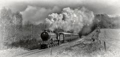 Photo of LNER B12