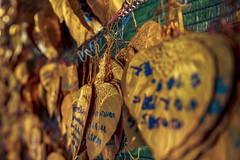 Golden Leaves #005 (axelord101) Tags: stillife pattern leaves travel golden