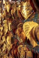 Golden Leaves #008 (axelord101) Tags: stillife pattern leaves travel golden