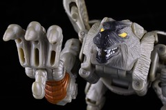 Fangs of the wolf, claws of the eagle (Fuyoh!) Tags: 1998 hasbro transformers beastwars fuzors silverbolt toy actionfigure