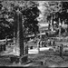 Mount Hope Cemetery aka Pet Sematary