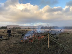 Photo of Me beside an RSPB invasive willow scrub removal bonfire